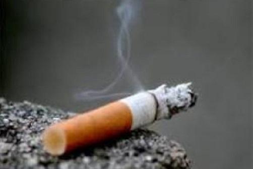 ВОЗ, табачные изделия