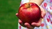 яблоки, дети, фруктовый сок