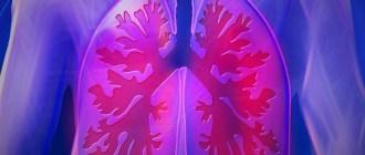 бактерии, легкие, The Journal of Experimental Medicine