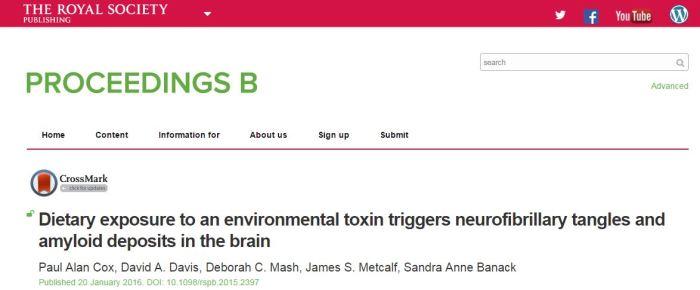 Cox, Paul Alan; Davis, David A.; Mash, Deborah C.; Metcalf, James S.; Banack, Sandra Anne (2016) Dietary exposure to an environmental toxin triggers neurofibrillary tangles and amyloid deposits in the brain // Proc R Soc B - vol. 283 (1823) - p. 20152397