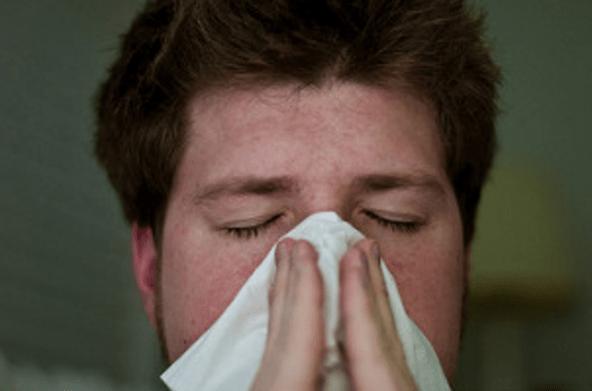 грипп, Калининградская область