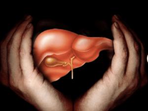 Gut, НАЖБП, анализ крови