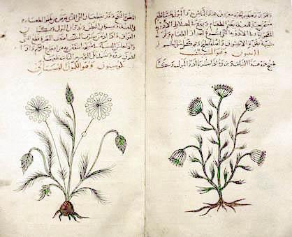 EMBO reports, лекарственные травы,