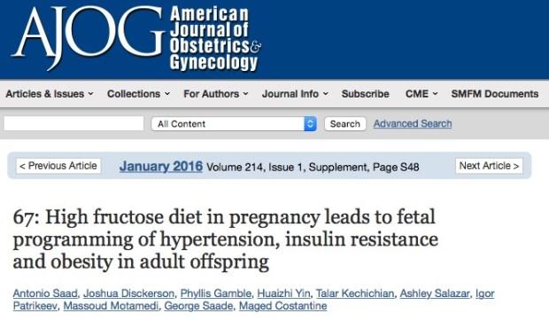 Потребление большого количества фруктозы во время беременности повышает риск сердечно-сосудистых заболеваний у ребенка