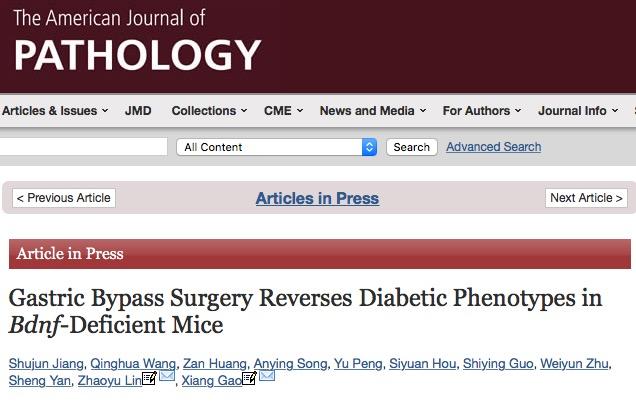 диабет, The American Journal of Pathology