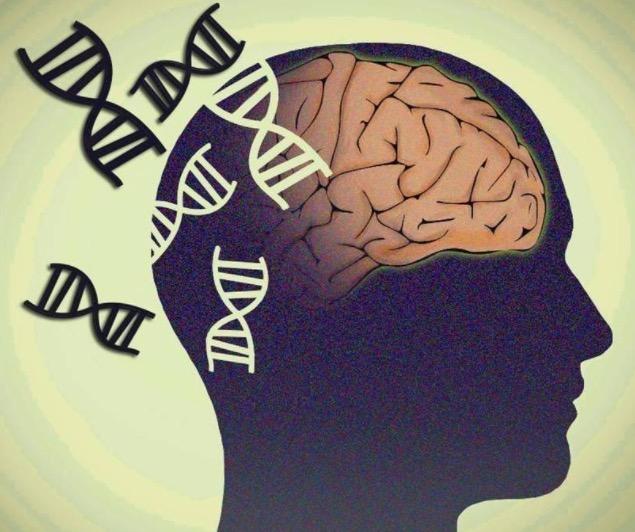 Болезнь Альцгеймера, деменция, наследственность, генетика
