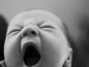 зевание, зевота