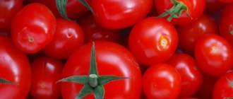 томаты, рак кожи