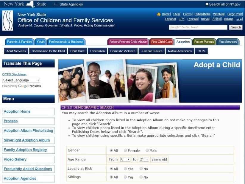 New-York-adoption-site