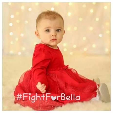 Bella fight for Bella