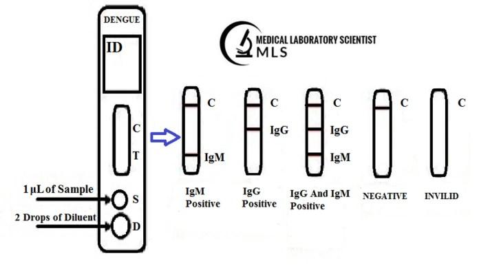 Dengue IgG / IgM Ab Rapid Test