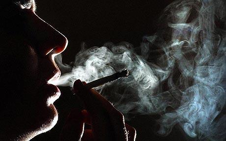 cannabis_1296201c