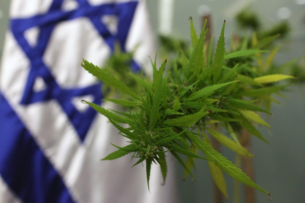 medical-marijuana (1)