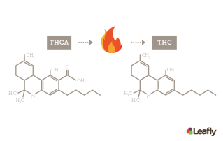 graph showing THCa into THC from leafly