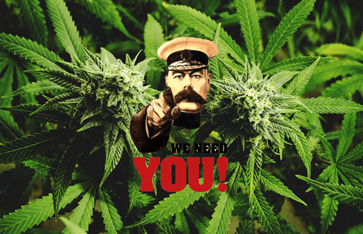 Medical Cannabis British War propoganda poster