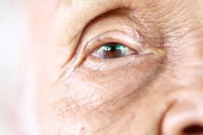 insulin resistance and alzheimer's disease