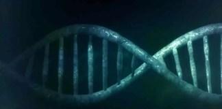 inherited diseases
