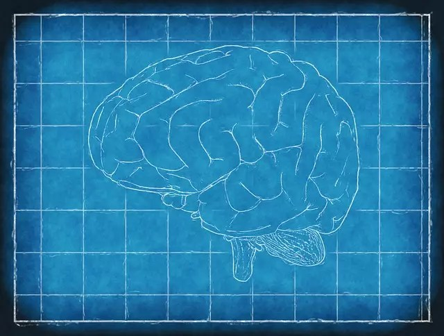 what is alzheimer's disease caused by