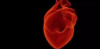 dapagliflozin in patients with heart failure