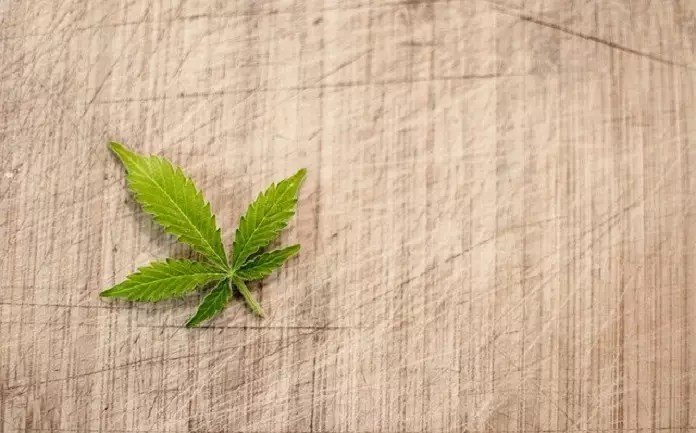 things to know about cannabis edibles