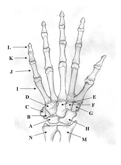 Medical Pictures Info
