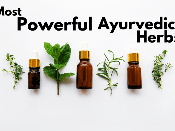 Most Powerful Ayurvedic Herbs and Plants to Learn