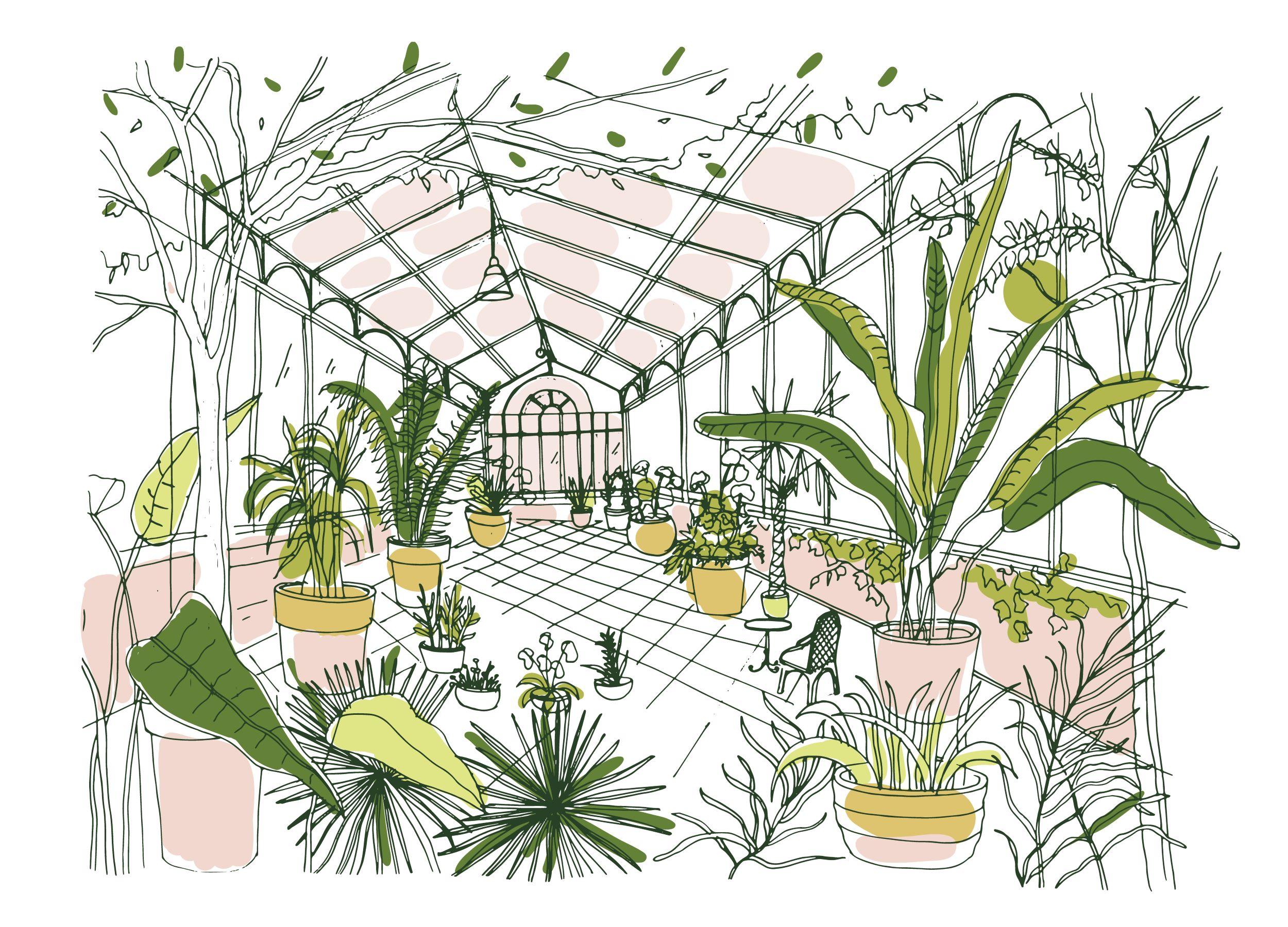 Vitamin C Rich Plants – 10 Plants For Indoor Garden