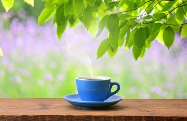 Green Tea – Functions, Effectiveness, Preparation, Dosages, Side-Effects