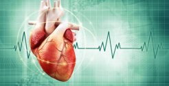 Medical Terminology Quiz Atrial Fibrillation
