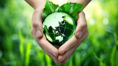 Photo of التدابير التحفيزية في القوانين البيئية