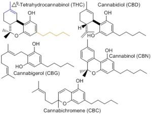 cannabinoids3