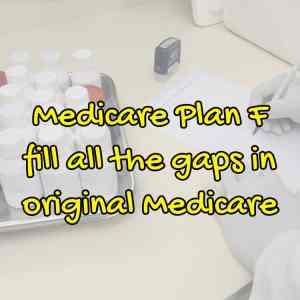 Medicare Plan F Gaps