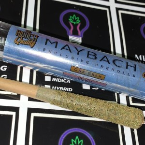 M2 Maybach Exclusive Preroll