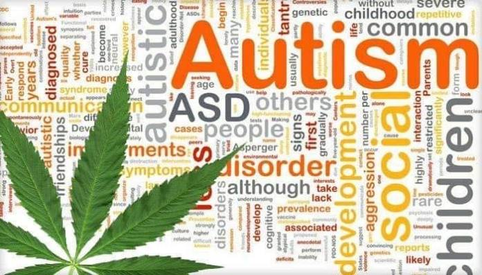 The Autism Alliance of Ohio, founded by Tiffany Carwile, encourages all Ohioans to support new MMJ conditions, especially autism spectrum disorder.