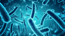 terapia-batterica