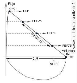 flujo_volumen
