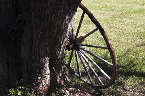 Ranch wheel