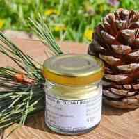 Сосновая пыльца - полезные свойства и применение. Рецепты