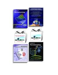 Medical Graphics - Graphic Design   Renaissance School of ...