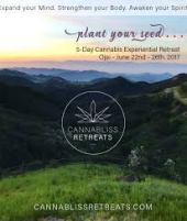 cannabliss retreat