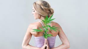 cannabis and yoga