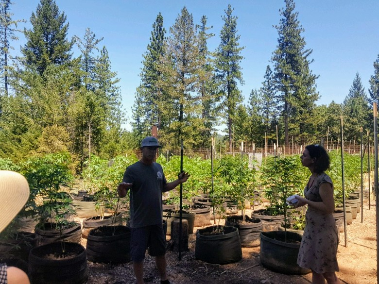 Israeli Farmers in Nevada County
