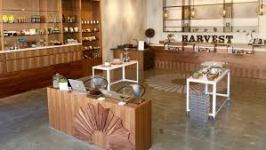harvest dispensary