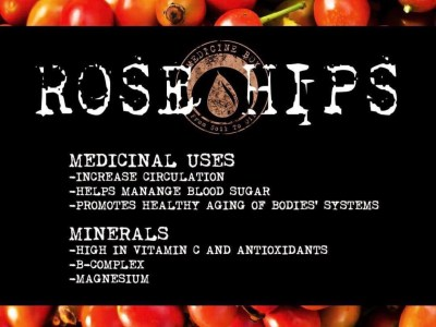 Herb Spotlight: Rose Hips