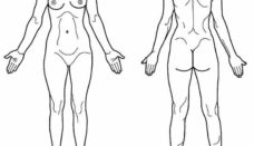 Anterior Anatomical Position out our blog post on