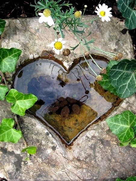 Heart Pool Reflection