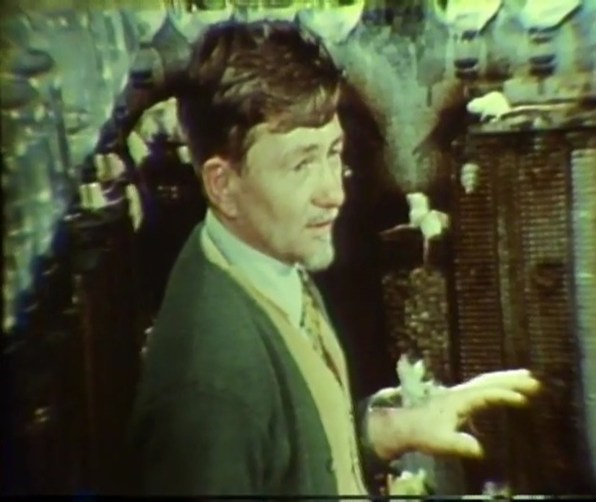 Calhoun in a rodent enclosure.