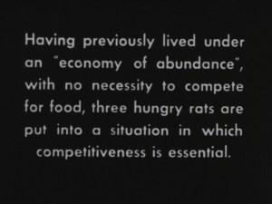 three hungry rats