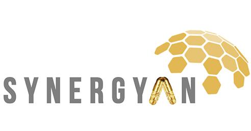 synergyan