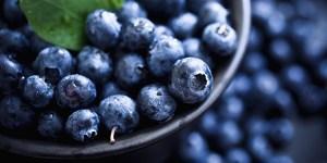 FEA-Blueberries